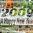 2009年賀状