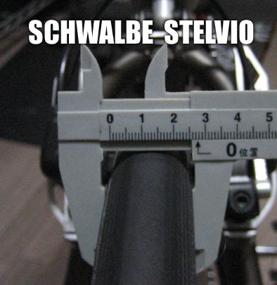 Schwalbestelvio